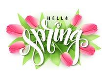 导航手字法的例证-你好在开花的郁金香分支背景的春天  库存例证