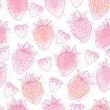 导航无缝的在桃红色淡色的样式用概述草莓和污点在白色背景 高雅花卉背景 皇族释放例证