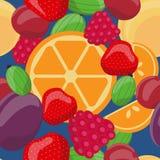 导航无缝的果子样式,桔子,鹅莓,草莓,李子,樱桃,莓,杏子 免版税库存照片