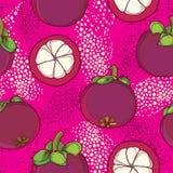 导航无缝的样式用概述在桃红色背景的紫色山竹果树或藤黄山竹果树果子 果子样式 皇族释放例证