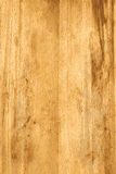导航杉木或轻的木头被构造的木背景 库存照片