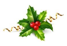 导航现实霍莉圣诞节装饰品、绿色叶子和红色莓果与在白色隔绝的金黄蜒蜒丝带 免版税库存照片