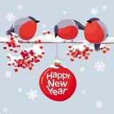 导航红腹灰雀和花揪圣诞节和新年图象 皇族释放例证