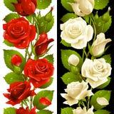 导航红色和白色玫瑰垂直的无缝的啪答声 免版税库存照片