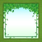 导航自然与绿色叶子框架的背景横幅 向量例证