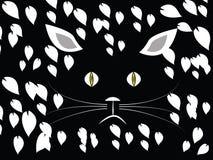 猫在密林在晚上 库存照片
