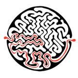 导航迷宫,圆的迷宫例证用解答 免版税库存照片