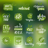 导航eco,有机,生物商标或标志 素食主义者,健康食物证章,为咖啡馆设置的标记,包装等的餐馆,产品 向量例证