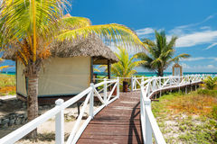 导致一个热带海滩的道路在古巴 免版税库存照片