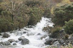 导致下来湖的小河 免版税库存图片