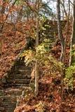 导致冰河小山的楼梯盖在秋天颜色在印第安纳森林里 库存照片