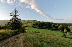导致在左右边的深绿色草的乡下公路 多云天空 图库摄影