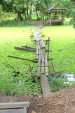 导致在湖旁边的一个村庄的脚桥梁 库存照片