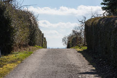 导致天空的道路丛生蓝色美好的晴天天气Pers 免版税图库摄影