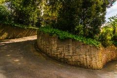 导致密集的绿色灌木,野花,水多的gr的狭窄的道路 库存图片