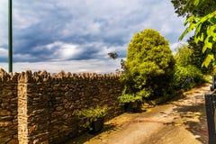 导致密集的绿色灌木,野花,水多的gr的狭窄的道路 库存照片