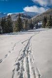 导致山风雨棚在冬天, Tatra山的小径 免版税库存照片