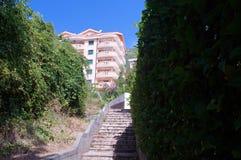 导致房子,沿海城市的一个典型的样式的老台阶 库存图片