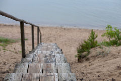 导致海滩的老木台阶从沙丘 免版税库存图片