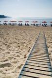 导致海滩的路 免版税库存图片