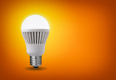 导致的电灯泡 免版税库存图片