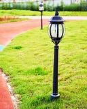 导致的草坪闪亮指示 免版税库存图片