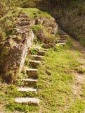 导致石的台阶 免版税库存图片