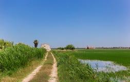 导致La阿尔布的米领域的一个白色房子的土路 免版税库存照片