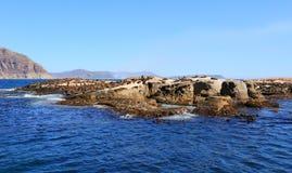 封印海岛在开普敦 库存照片
