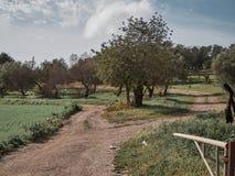 射击一条农村路在一个晴天 免版税图库摄影