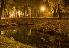 射击一条河的夜在城市公园 免版税库存图片