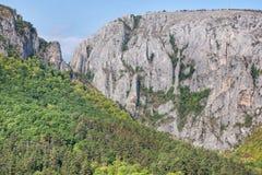 射击与在发烟性背景和一个森林中看见的山沟的山边在边 库存图片