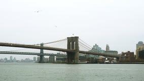 射击布鲁克林大桥 股票视频