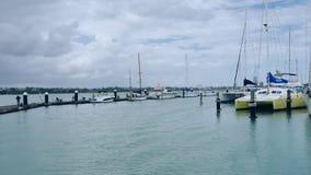 射击新西兰奥克兰bayswater小游艇船坞&城市视图 影视素材