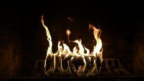 射击烧在令人满意庄严关闭的舒适可爱的日志大气壁炉的木火焰慢动作被射击  股票视频
