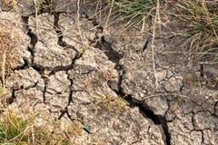 射击的破裂的土壤关闭在自然光 免版税库存照片