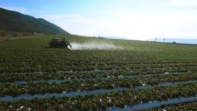射击种植园领域的灌溉的系统 股票录像