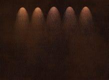 射线用皮革包盖发光的纹理 免版税图库摄影