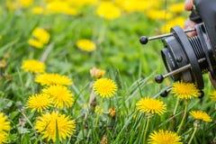 射击与& x22; 透镜baby& x22;在花田 免版税图库摄影