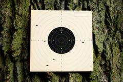 射击实践 免版税库存照片