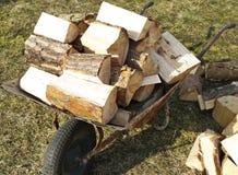 射击木头 库存照片