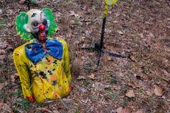 射击目标被毁坏的五颜六色的可怕小丑森林 库存照片