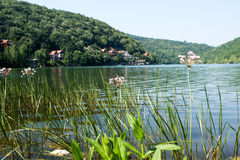 射击Bovan湖在索科矿泉村温泉附近 免版税库存图片