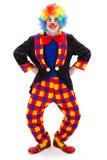 小丑滑稽的姿势 库存照片
