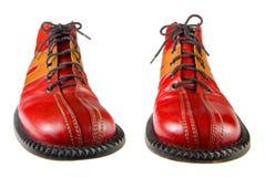 小丑鞋子 免版税库存图片
