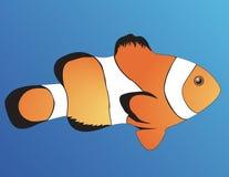 小丑鱼 库存例证