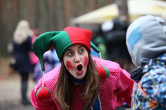 小丑`荷兰芹` 免版税图库摄影