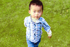 小中国男孩是走的公园 草背景的一个孩子感兴趣看照相机 库存图片