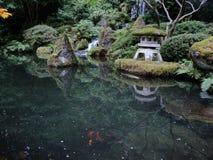 小井池塘!波特兰,俄勒冈,日本庭院 免版税图库摄影