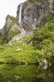 小便母马在西部溪池塘落 免版税库存照片